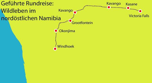 Wildleben im nordöstlichen Namibia